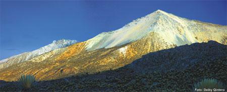 pico-panazucar